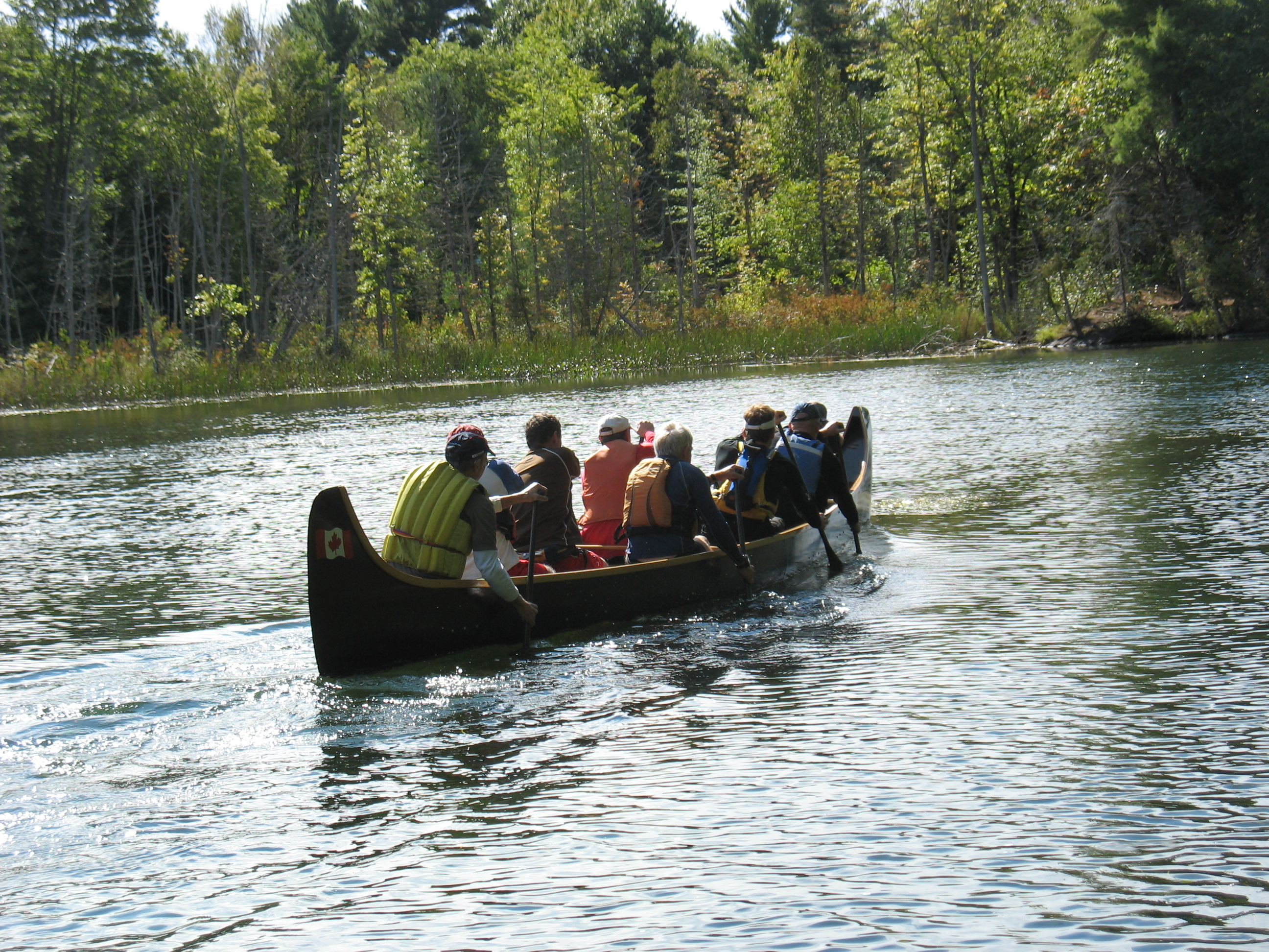 Muskoka paddle club announces arrival of a voyageur style for The big canoe