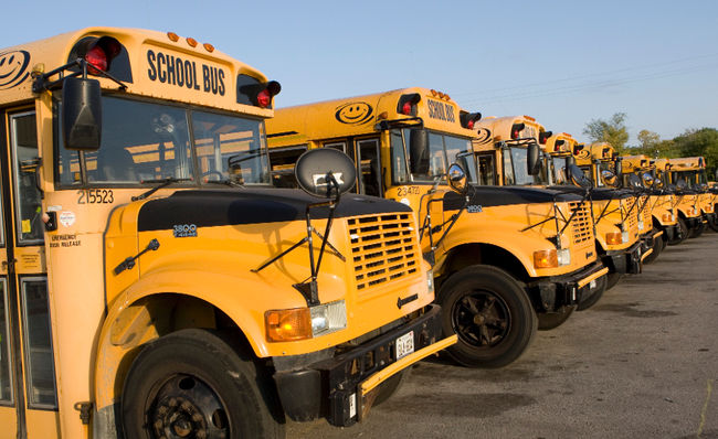 Bus Cancellations: TLDSB Wants To Refresh Everyone's Memory About Bus