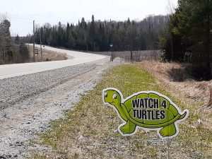 Watch 4 Turtles Sign