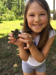 Girl holds an overwintered hatchling turtle
